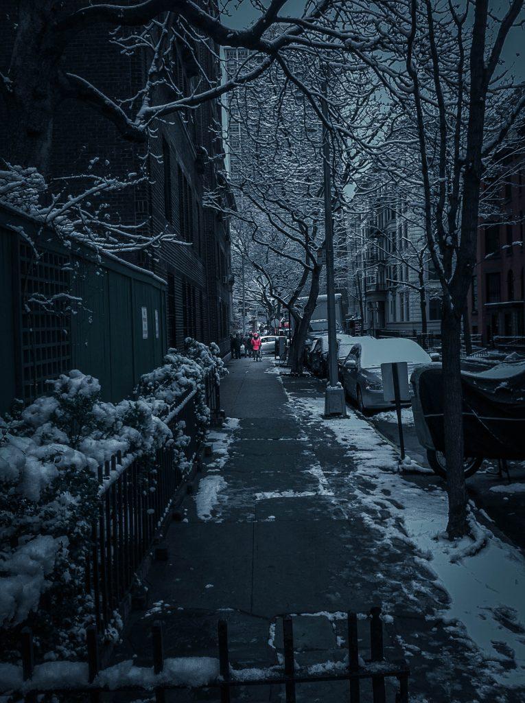 Snow Day in Brooklyn